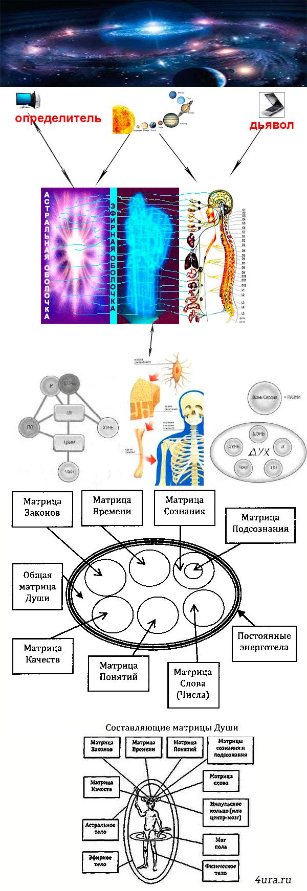 Первичная энергия человека