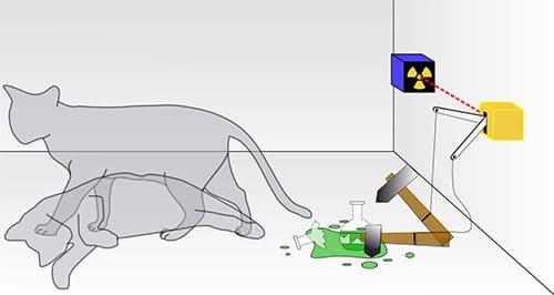 Schrodingers_cat
