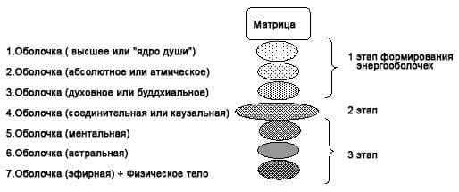 shell schema