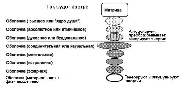 shell-scma-min